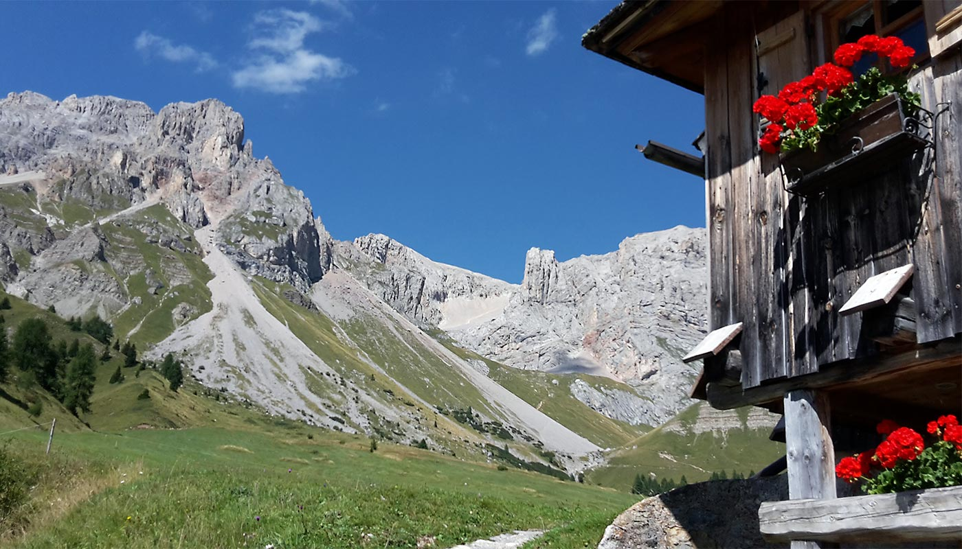Detail of a flowery balcony and the Dolomites in the background