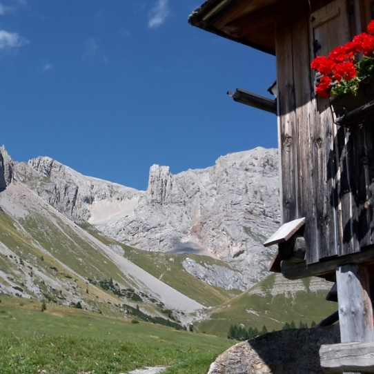 summer in the magical dolomites